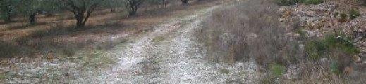 Il neige à Cabrières …