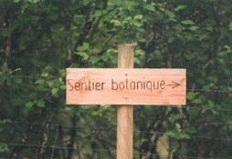 sentier_botanique2