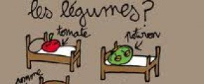 Le Printemps des Vignerons :(petit) salon de vins bio à CABRIERES(34)- 30 et 31 mars