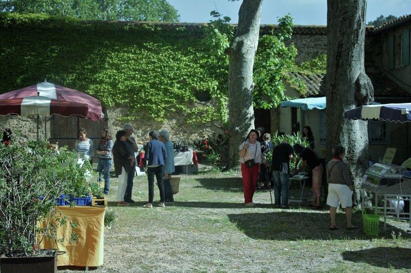 img_5524-800x533 marché bio herault dans Tourisme dans l'Hérault