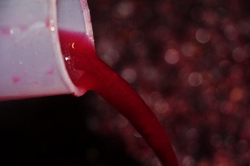 img_7910-800x533 dans Notre vinification en barriques