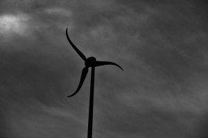 Ciels d'éoliennes  dans Photos prin-124-300x200