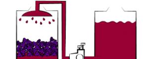 le Clos romain adapte ses techniques de vinification. Le délestage.
